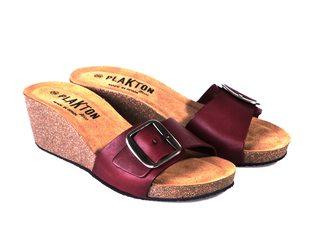 Plakton 361018